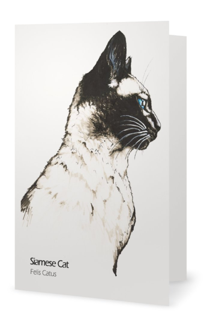Siamese cat drawing greeting card